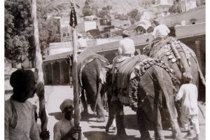 The Teej Procession in Old time at Elephant